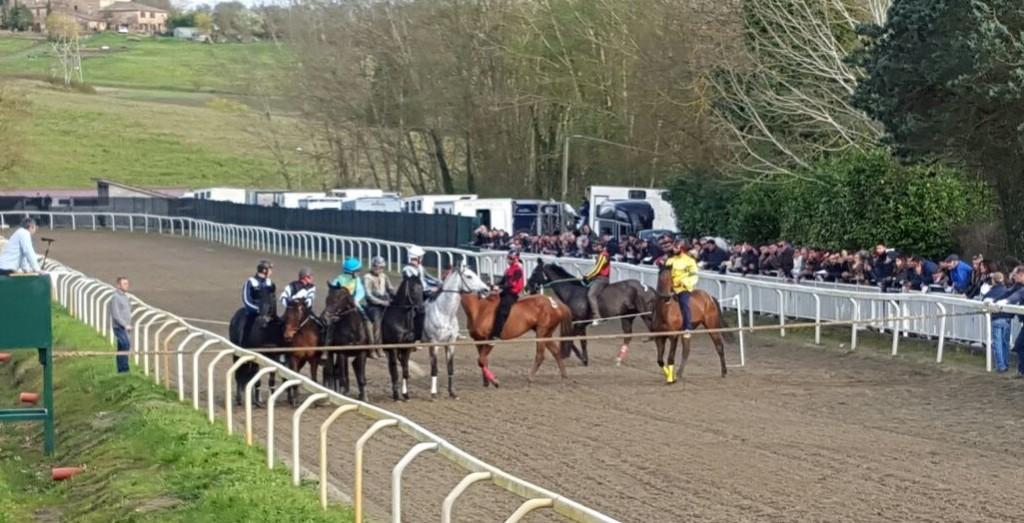 In corso blitz della Forestale a Pian delle Fornaci: prelievi a tutti i cavalli