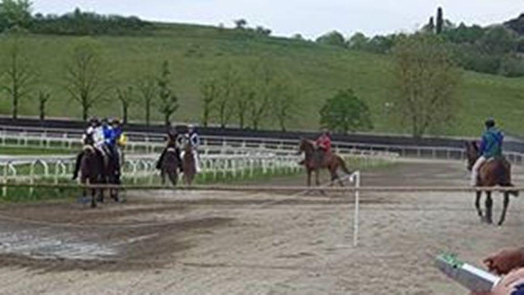 Fantini e cavalli, i risultati delle corse. Non corre il palio di Bomarzo