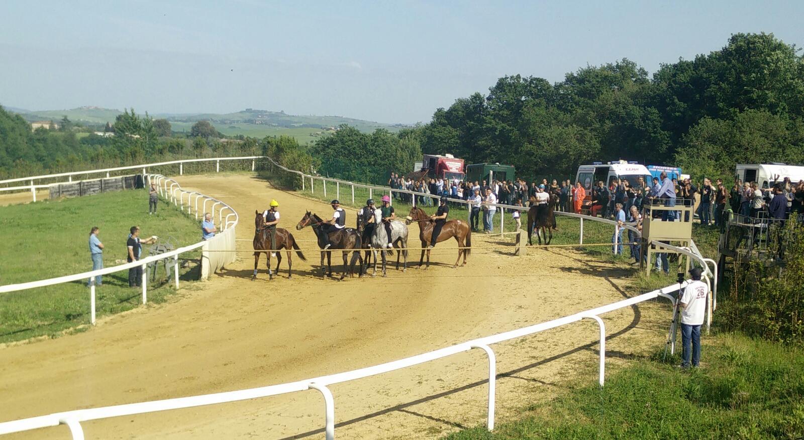 Mociano e Monticiano, piste aperte per la preparazione dei cavalli