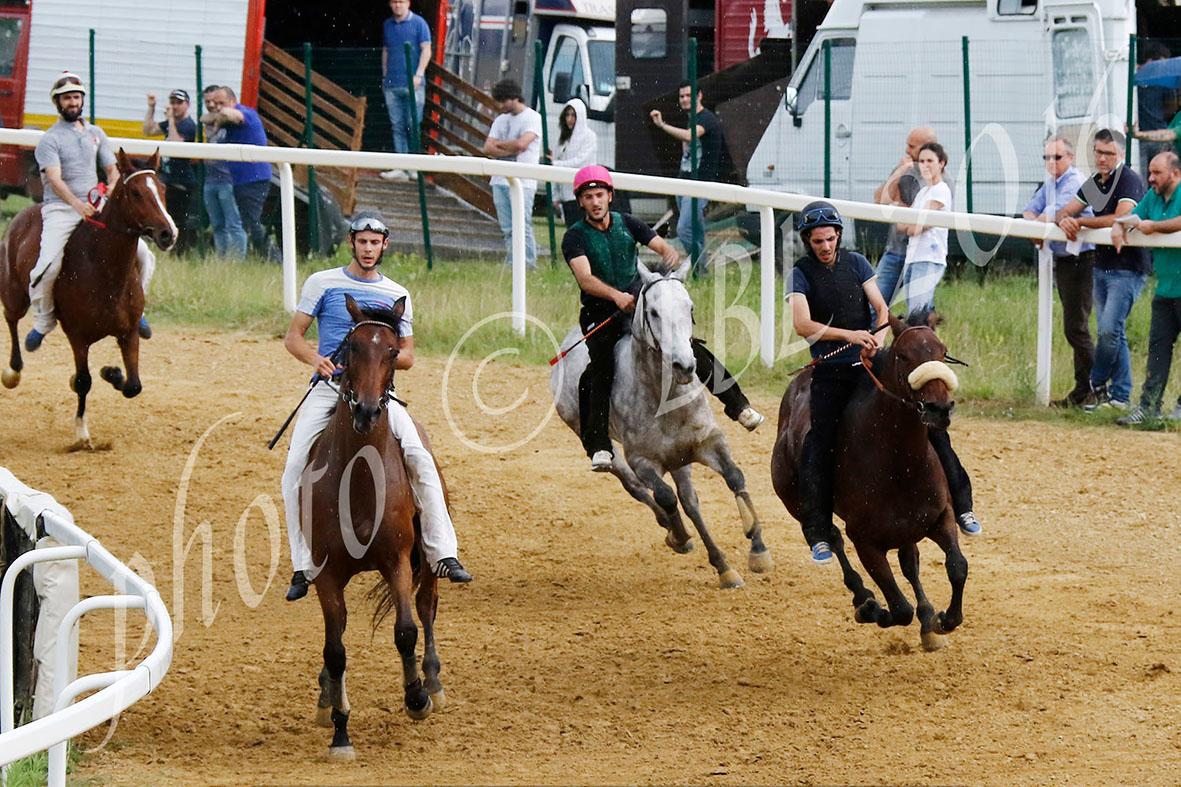 Mociano, domani i lavori di addestramento dei cavalli
