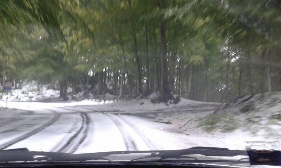 Sul Monte Amiata cade la neve