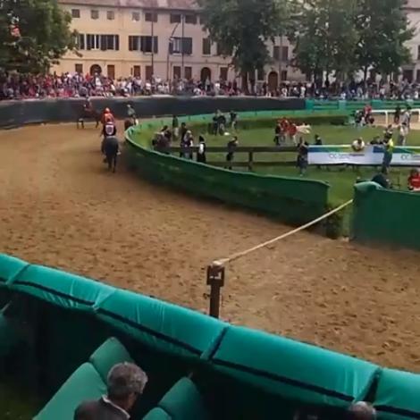Alessio Migheli vince a Ferrara