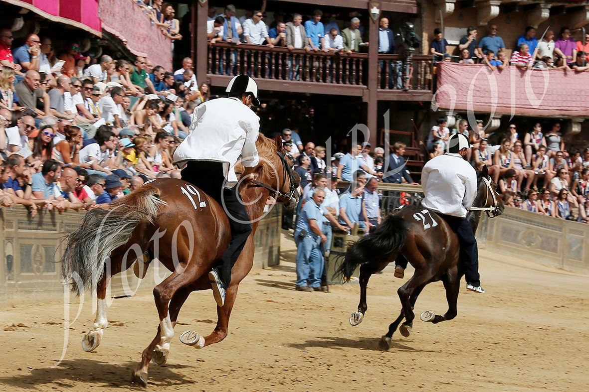 Palio: sono 33 i cavalli ammessi alla Tratta