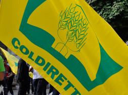 Coldiretti-protesta-cinghiali-4