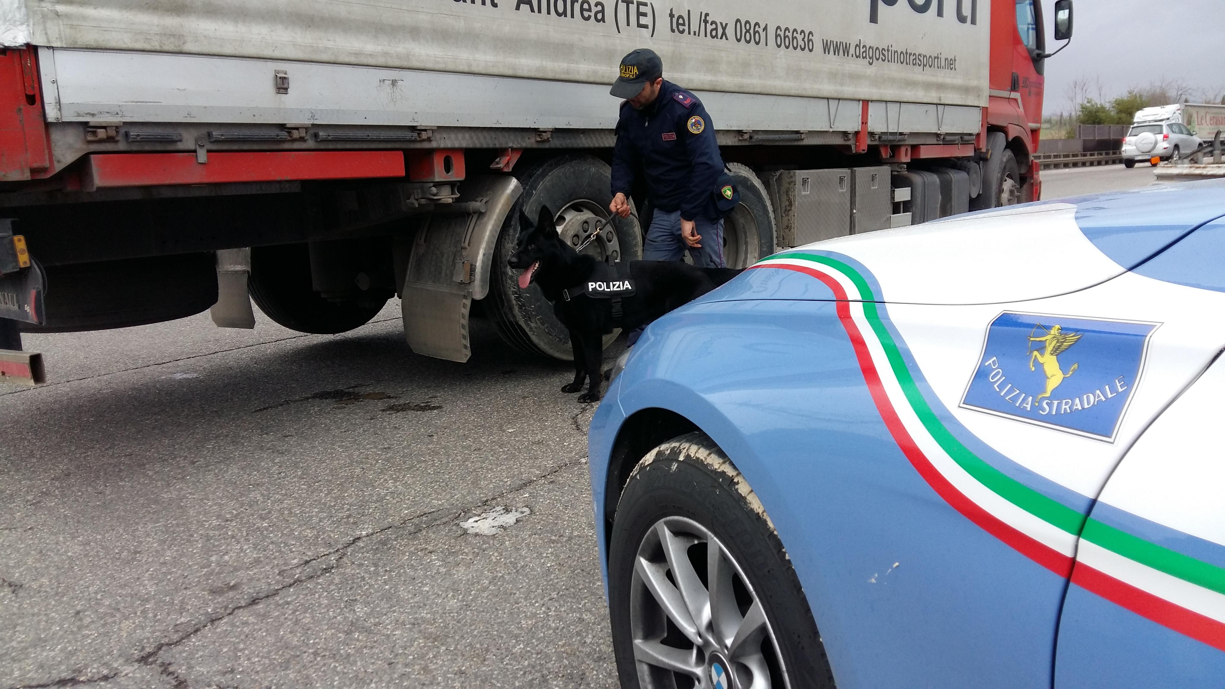 Troppe ore alla guida senza riposare, multato dalla Polizia