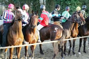 Pian delle Fornaci corse seconda giornata 2017 (15)