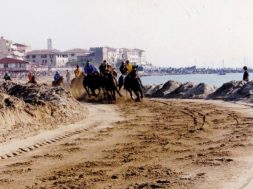 palio della costa etrusca