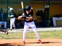 Dario Osti, baseball