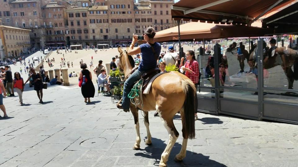 A Siena a cavallo, attraversa il centro fino a Piazza del Campo