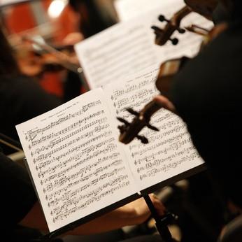 Musica Senensis, concerto al Santuario Casa di Santa Caterina l'11 Maggio