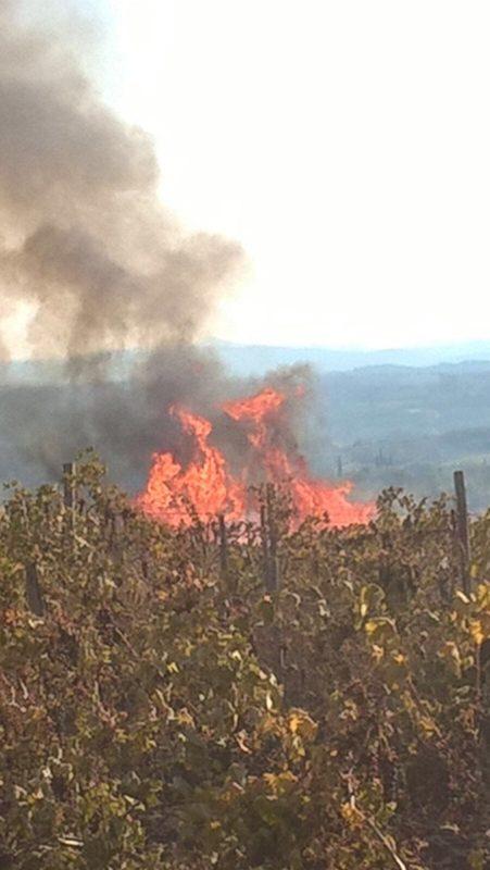 Conferenza mondiale incendi boschivi, la Toscana presenta in Brasile l'esperienza del centro di Monticiano