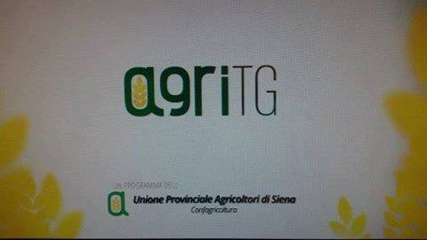 Agricoltura senese torna in Tv con Agritg