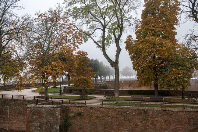 Covid-19, fino al 3 aprile chiusi parchi, giardini e aree verdi comunali a Siena