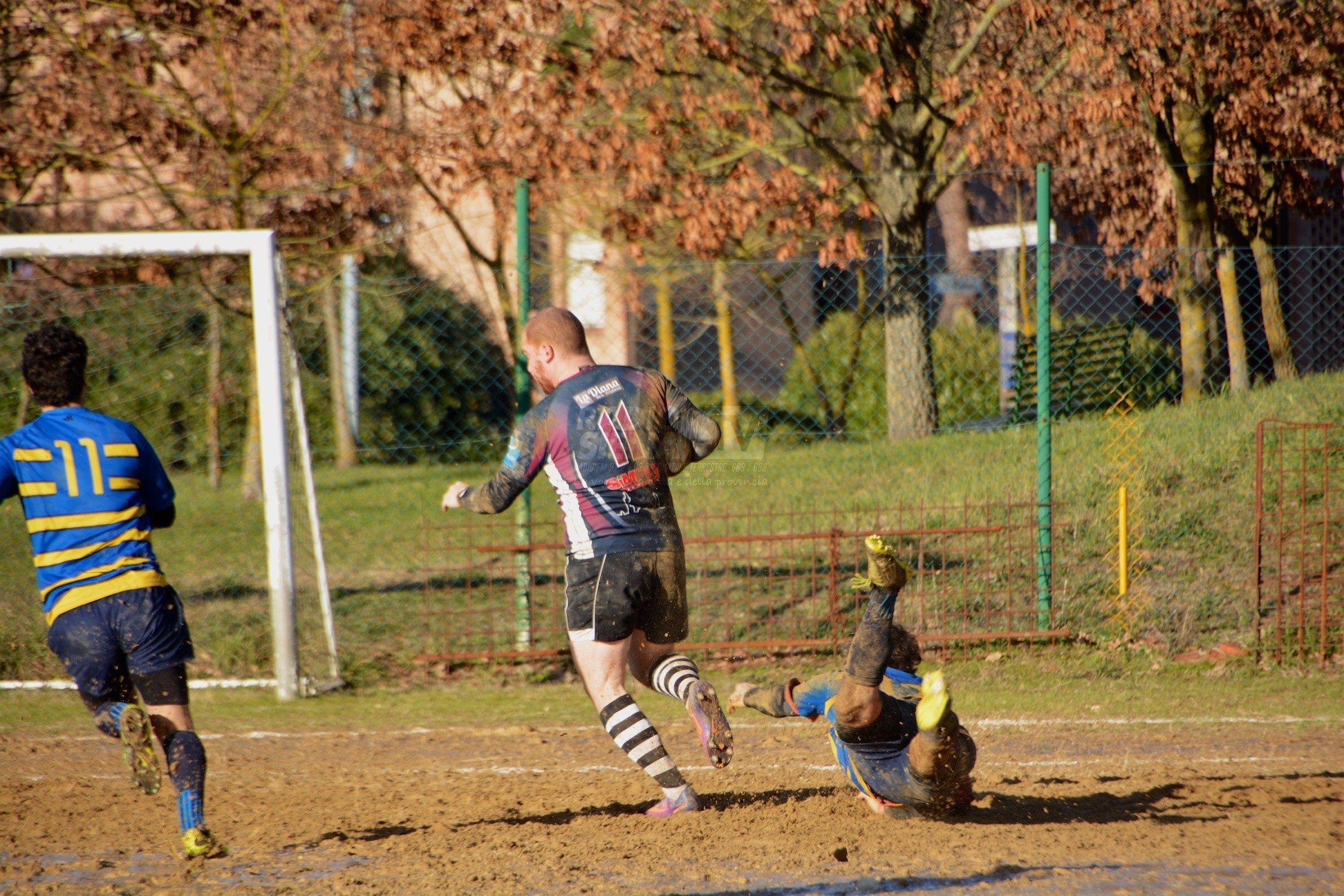 Rugby, il Cus Siena batte anche Pisa e continua la cavalcata solitaria