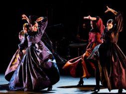 flamenco Catedral2