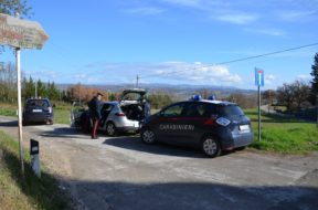 bimbo disperso carabinieri sovicille