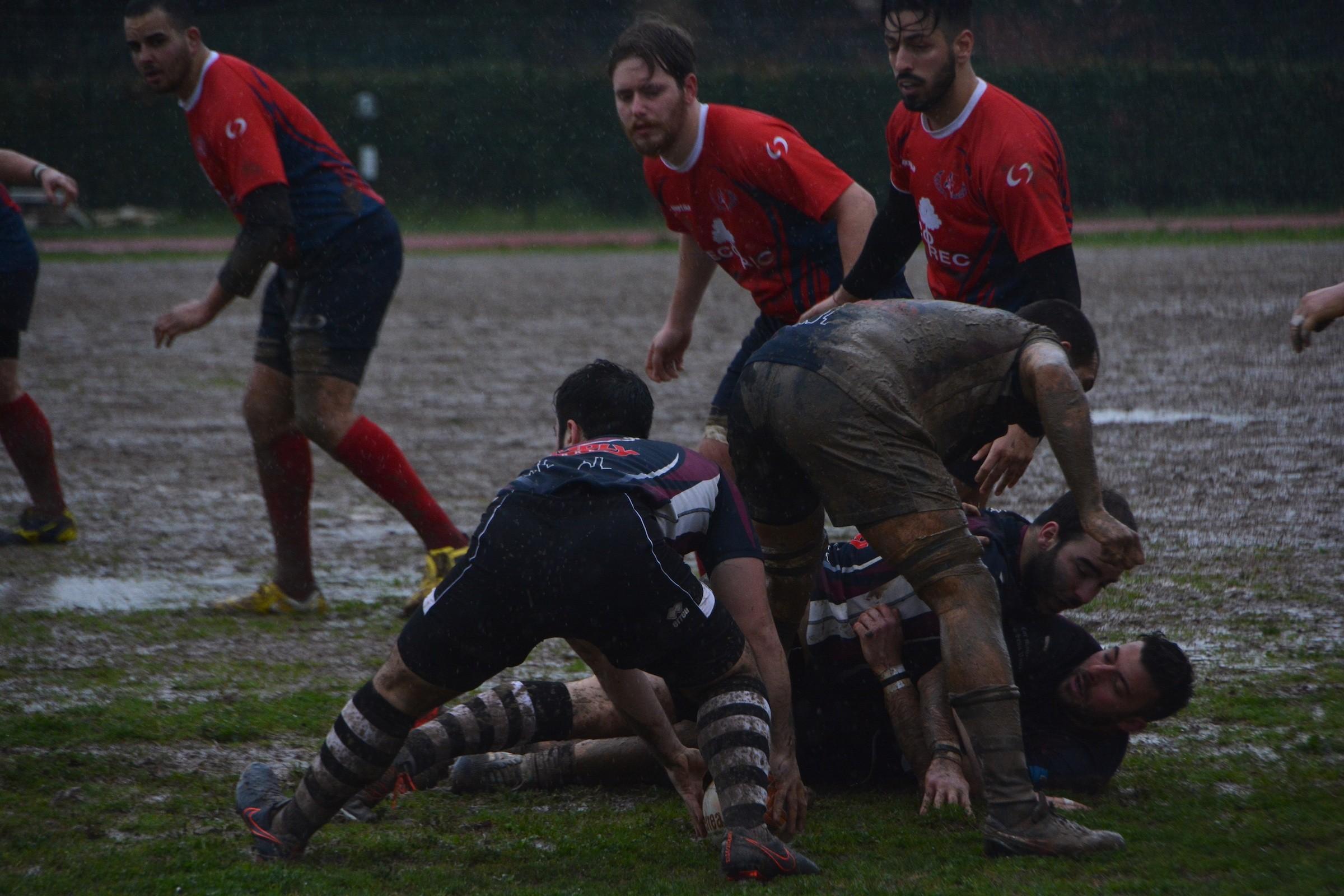 Cus Rugby Siena sempre più schiacciasassi: battuta anche Cecina