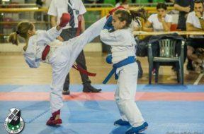 karate mens sana 2