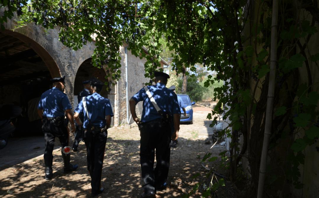Gabbie con tagliole e bocconi avvelenati, intervengono i carabinieri