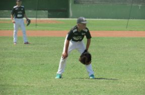 Baseball, torna la Coppa Toscana