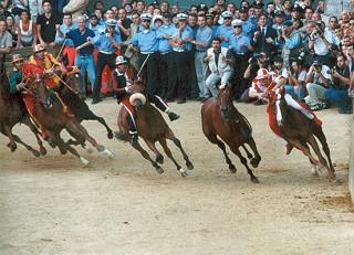 Lutto nel mondo del Palio: è morto il cavallo Ugo Sancez