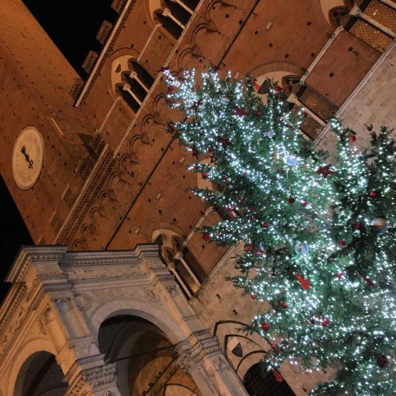 Quest'anno l'albero di Natale in Piazza del Campo lo faranno i piccoli delle 17 contrade