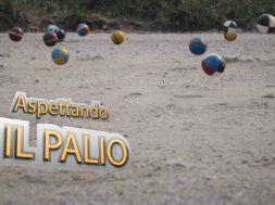 ASPETTANDO IL PALIO 2019