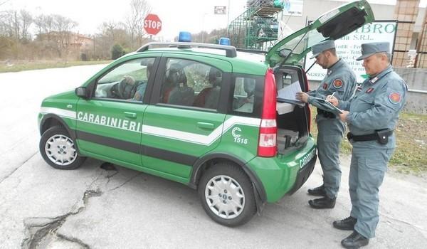 Forestale sequestra fabbricato abusivo a Monticiano: tre denunce