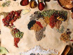 world food vivi fortezza