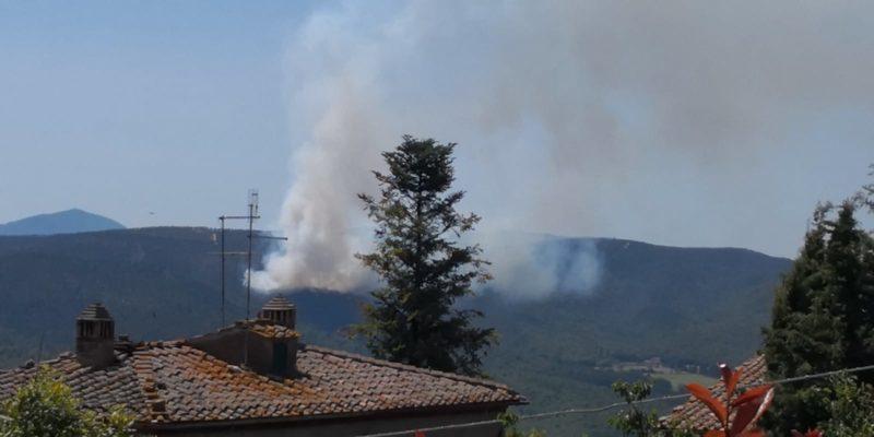 Nuovo incendio in una pineta a San Lorenzo a Merse