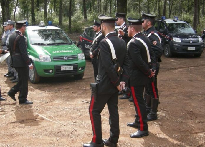 Cerca funghi ma trova un lupo: salvato da Carabinieri e Vigili del Fuoco