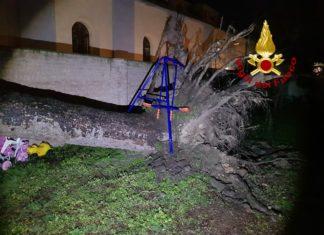 Forte vento, Vigili del Fuoco in azione tra Siena e Provincia