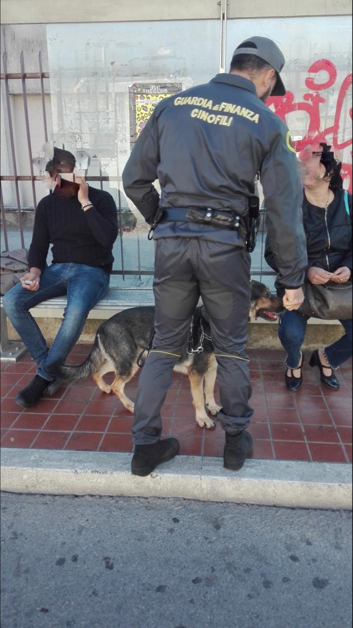 Guardia di Finanza, controlli antidroga con unitá cinofila