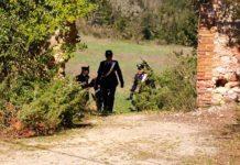 Sola in casa non riesce a procurarsi la spesa: Carabinieri e Misericordia aiutano una 76enne
