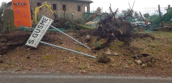 Tromba d'aria colpisce Castelnuovo Berardenga, Comune ringrazia chi ha lavorato nell'emergenza