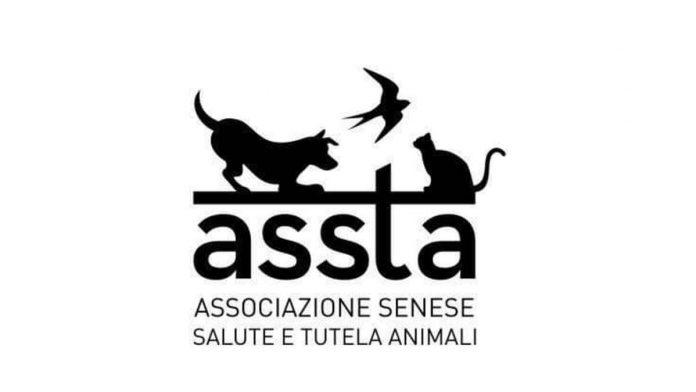 Tutela animali, affidi e adozione: riconfermata la convenzione tra Comune e A.S.S.T.A