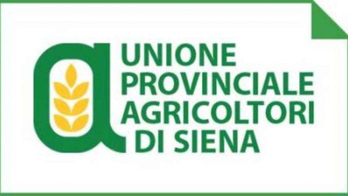 """Tagli ai rimborsi per calamità naturali, Unione Agricoltori: """"Decisione incomprensibile"""""""