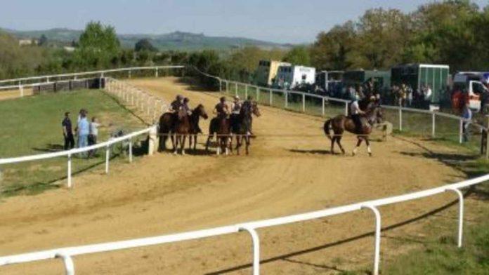 Protocollo equino: ecco il nuovo calendario della corse di addestramento