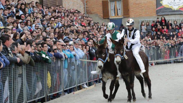 Torrita di Siena: annullato il Palio dei Somari
