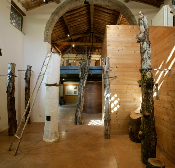 Sovicille: riaperto al pubblico il Museo del Bosco di Orgia