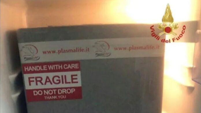 Il plasma partito da Siena per salvare gli asinelli è arrivato in Sardegna