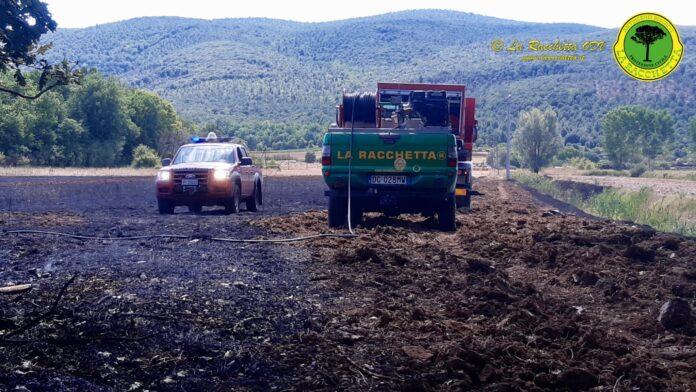 Monteriggioni, domato incendio boschivo in località la Colonna